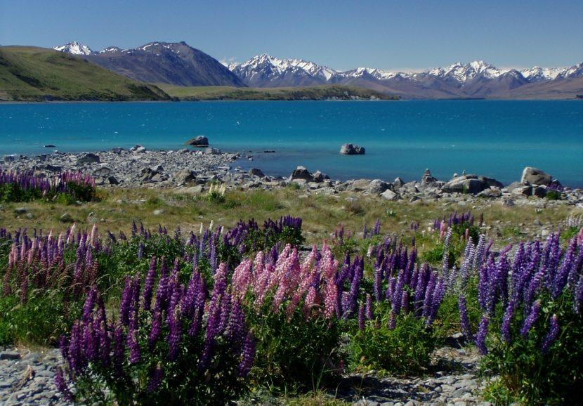 """""""Tiaki promise"""", un angajament simbolic pentru turiștii ce vizitează Noua Zeelandă"""