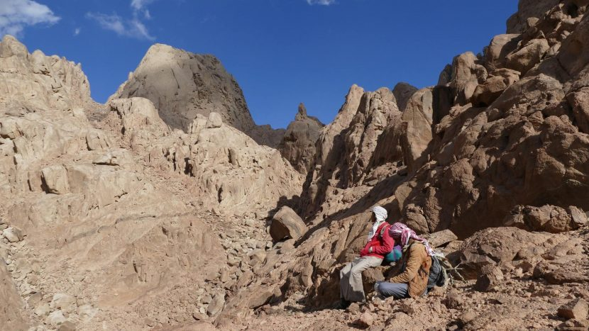 Pe urmele beduinilor | S-a inaugurat cel mai lung traseu de drumeții din Egipt