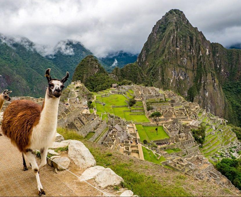 PERU | Program masiv de reîmpădurire la Machu Picchu